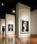 Hiroshi Sugimoto Exhibition, deYoung Museum